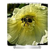 Hollyhock Collecter Shower Curtain