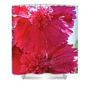 Hollyhock Duet Shower Curtain