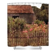 Hollyhocks And Thatched Roof Barn Shower Curtain