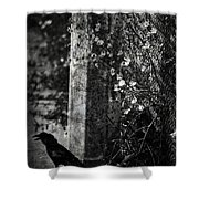Homebound Wings Shower Curtain
