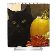 Black Cat And Pumpkin Shower Curtain