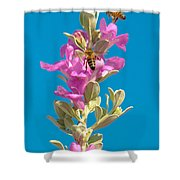 Honey Bees On Sage 1 Shower Curtain