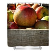 Honey Crisp Shower Curtain by Susan Herber