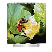 Honeybee And Cantalope Shower Curtain