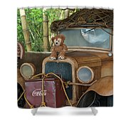 Hood Ornament Disney Bear Shower Curtain