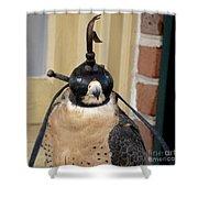 Hooded Barbary Falcon Shower Curtain