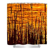 Horicon Cattail Marsh Wisconsin Shower Curtain