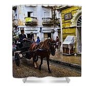 Horse And Buggy In Old Cartagena Colombia Shower Curtain by David Smith
