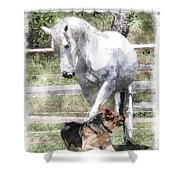 Horse And Dog Play Shower Curtain