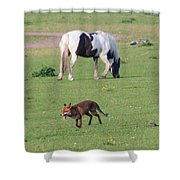 Horse And Fox Shower Curtain