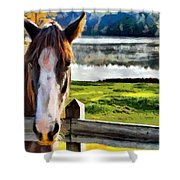 Horse At Lake Leroy Shower Curtain