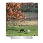 Horse Barn Hill Pasture Shower Curtain