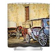 Horse Drawn Carriages In Guadalajara Shower Curtain