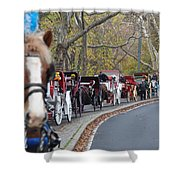 Horse-drawn Carriages Shower Curtain