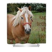 Horse Friend Birthday Shower Curtain