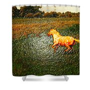 Horse Frolicking Shower Curtain
