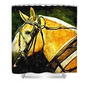 Horse In Paint Shower Curtain