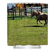 Horse Jump Shower Curtain