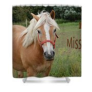 Horse Miss You Shower Curtain