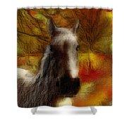 Horse On The Farm Shower Curtain