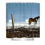 Horse Pasture Revdkblue Shower Curtain