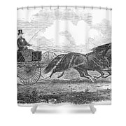 Horse Racing, 1862 Shower Curtain