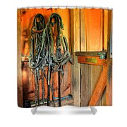Horse Tack Shower Curtain