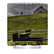 Horse Watching The Carriage Shower Curtain by Darcy Michaelchuk