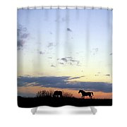 Horses And Sky Shower Curtain