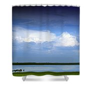 Horses By Lake On Overcast Day Shower Curtain