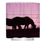 Horses Grazing At Dawn  Shower Curtain