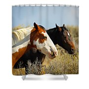 Horses In The Wild Shower Curtain