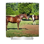 Horses Of A Different Color Shower Curtain