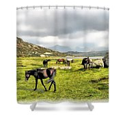 Horses Of Wyoming Shower Curtain