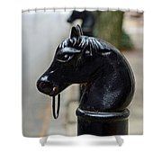 Horses On Delancey Street Shower Curtain