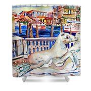 Horses On The Grand Canal Of Venice Shower Curtain