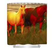 Horses Soft And Sweet Shower Curtain