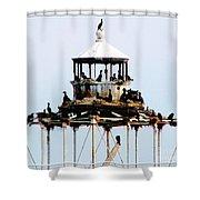Horseshoe Reef Lighthouse Shower Curtain