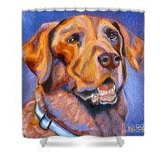 Hot Chocolate Lab Shower Curtain