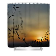 Hot Sunset Shower Curtain