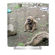 Howling Baby Monkey Shower Curtain
