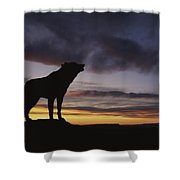Howling Wolf Silhouetted Against Sunset Shower Curtain