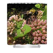 Huge Bumble Bee Shower Curtain