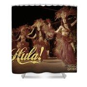 Hula Daguerreotype Shower Curtain