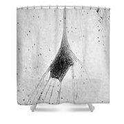 Human Neuron Shower Curtain