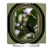 Hummingbird - Card - Glint Of The Eye Shower Curtain
