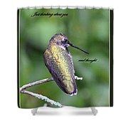 Hummingbird - Thinking Of You Shower Curtain