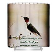 Hummingbird - Cards Shower Curtain