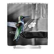 Hummingbird Wings II Shower Curtain