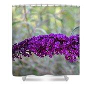 Hummingbird's Delight Shower Curtain
